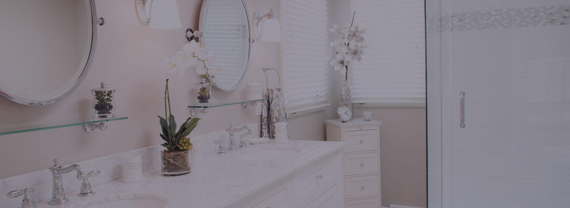 carol stream bathroom remodel companies